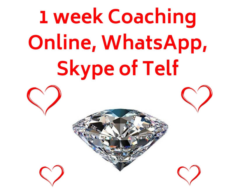 Coaching 1 week (via Zoom, WhatsApp, Skype of Telf.)