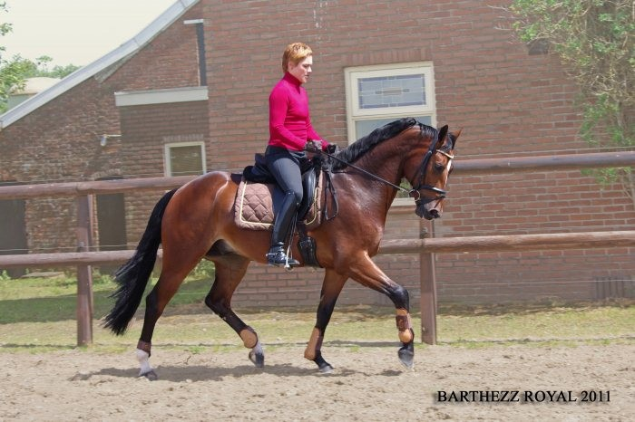 Barthezz Royal (v. Rhodium) met Valeska ter Vrugt