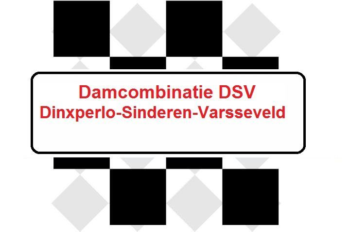 dsv-logo-rev_large-2.jpg