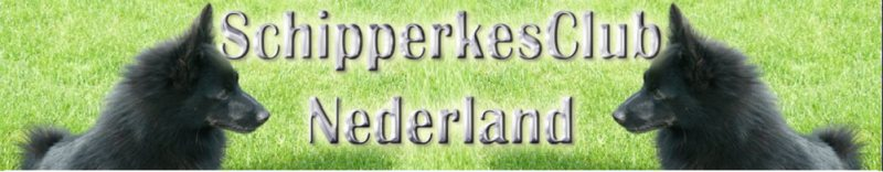 upload/1/d/f/schipperkejoep/banner1.large.jpg?0.5222476818598807