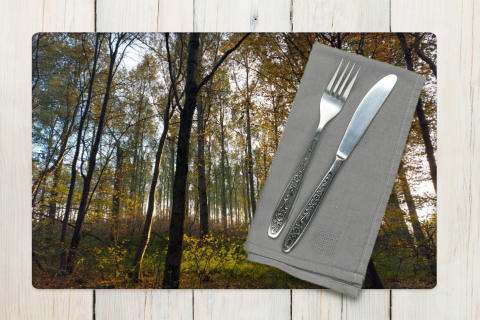 Placemat Sunny Forest