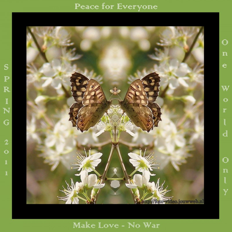 peace-card.large.jpg