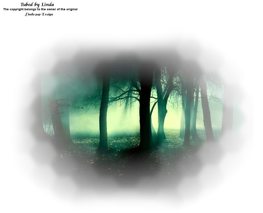 LF-CreepyForest-20102015.png