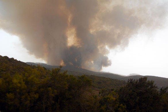 1344804285839-incendio-gomera8_large.jpg