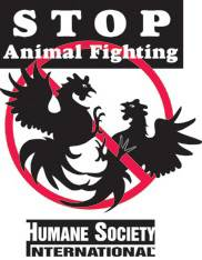 185x264_stop_animal_fightin-1.jpg