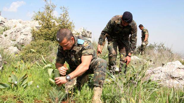 ejercito-reforestar-canarias-kPjH--620x349abc.jpg