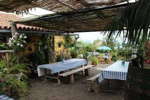 guachinche_tenerife_11_holiday_home.jpg