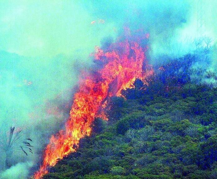 incendio-chipude-vallehermoso-74_g.jpg