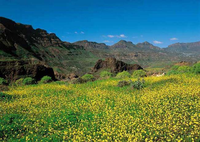 paradise-for-locations-gran-canaria-55-79_g-1.jpg