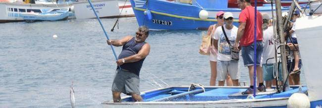 preview2col_mg-74.jpg