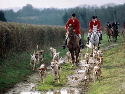 fox-hunting-1.large.jpg
