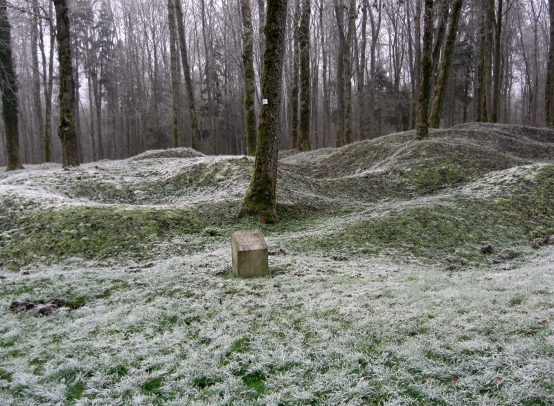 2008-12-9-wo-1-village-detruit-douaumont.large.jpg