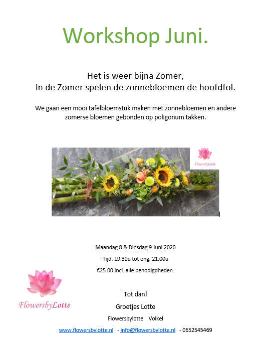 (Extra) Dinsdag 9 Juni 2020 Workshop Juni