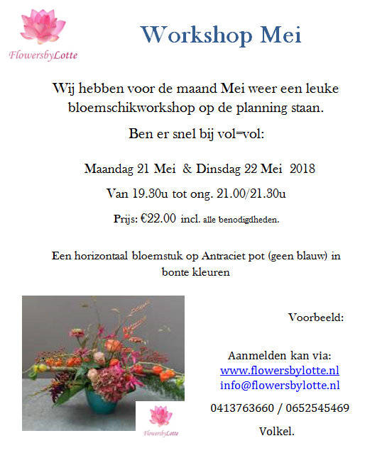 Workshop Dinsdag 22 Mei 2018