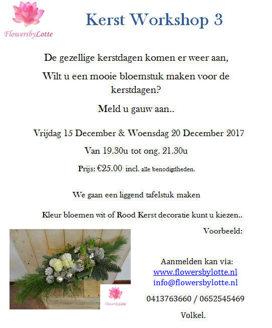 Kerstworkshop 3 Woensdag 20 December 2017
