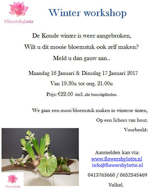 Workshop winter Dinsdag 17 Januari 2017