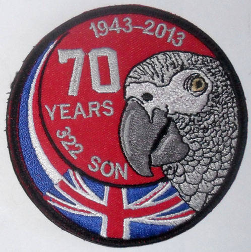 SAM_2922322sqn70yearsgreyPolly.jpg