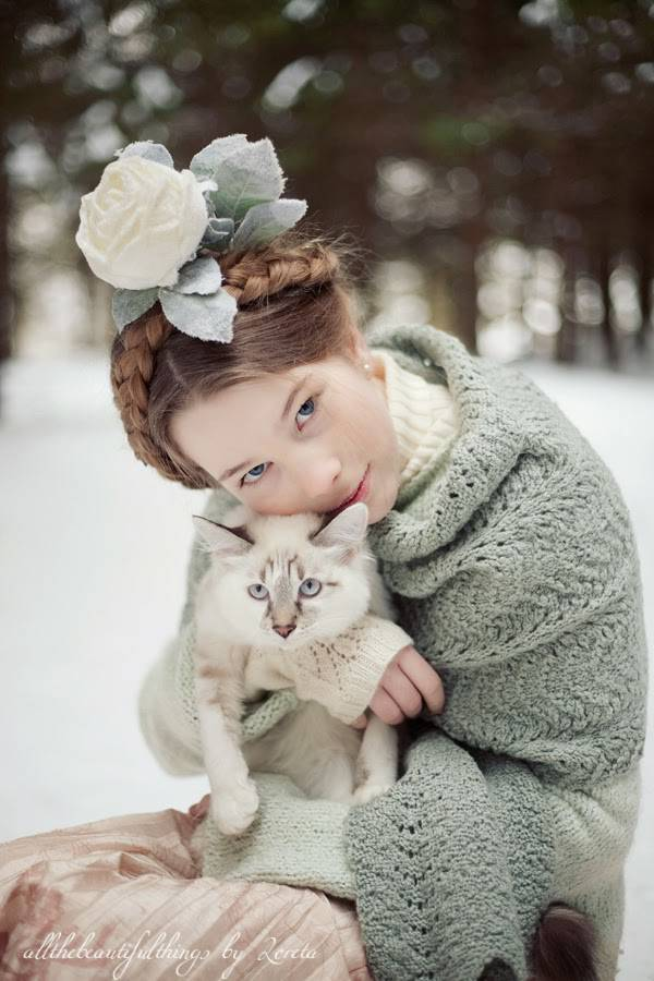 mori-winter-cat.jpg