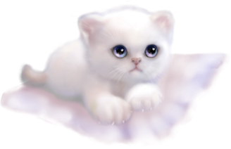 softkitty2.png