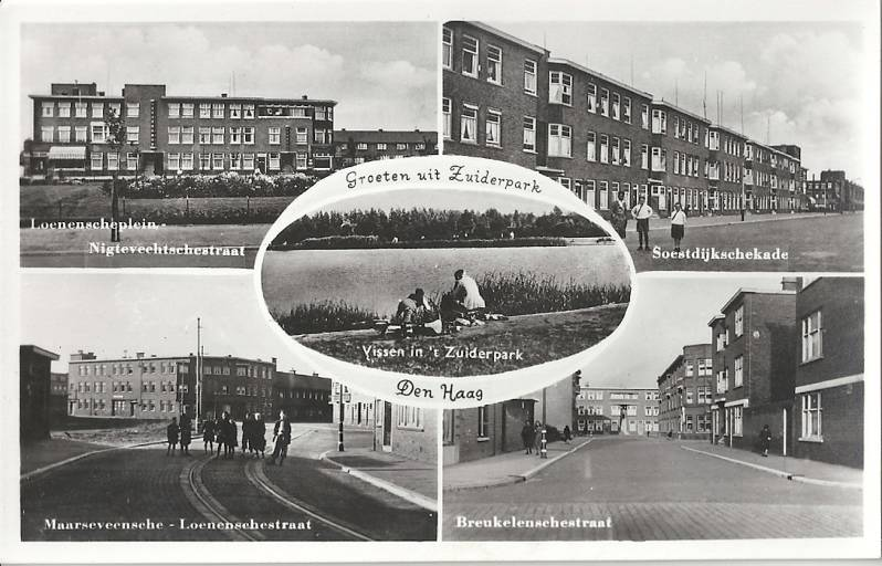 CollageZuiderparkb5-1.jpg