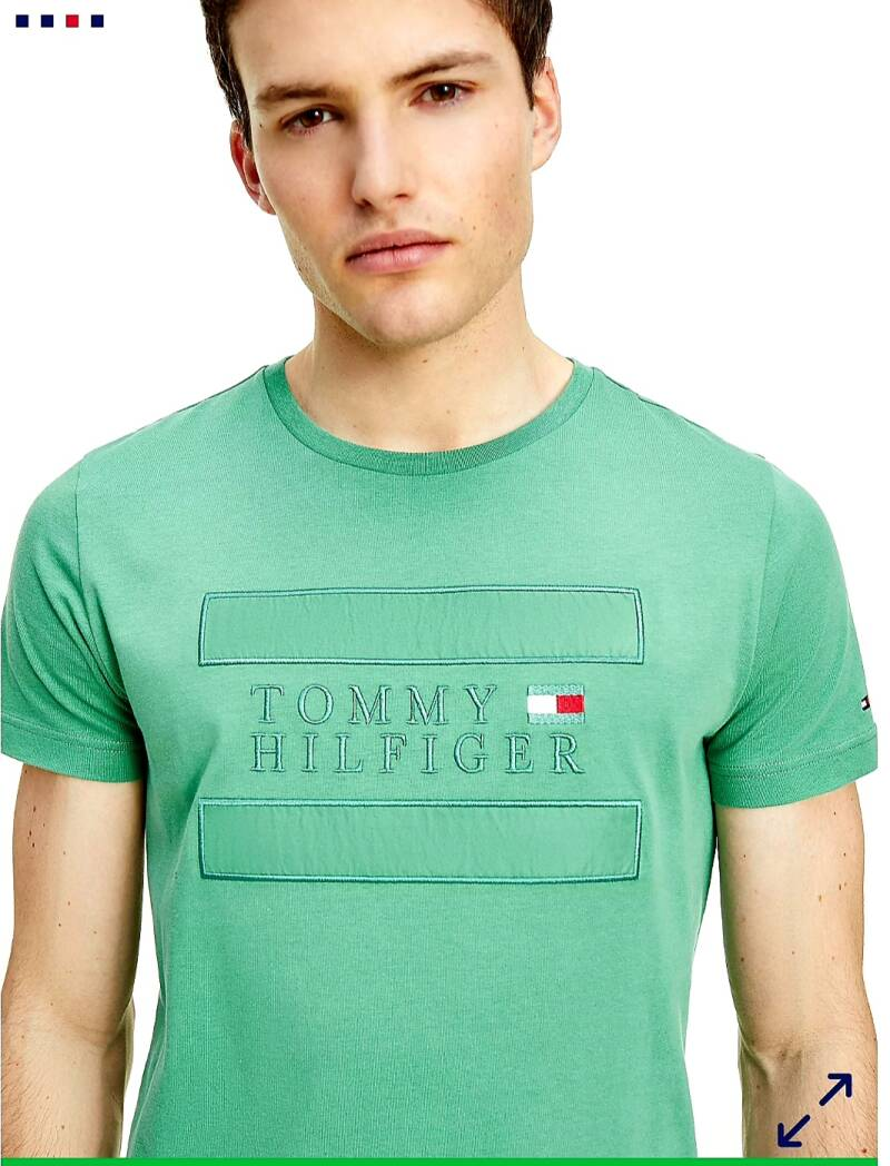 Tommy hilfiger appilique tee