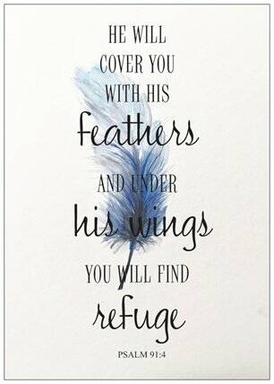 He will cover you