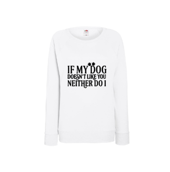 Sweater If my dog don't like you