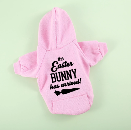 Pasen hoodie The Easter bunny has arrived