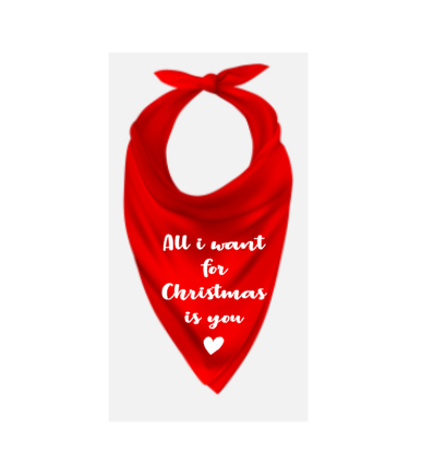 Kerst bandana hond All i want for Christmas is you