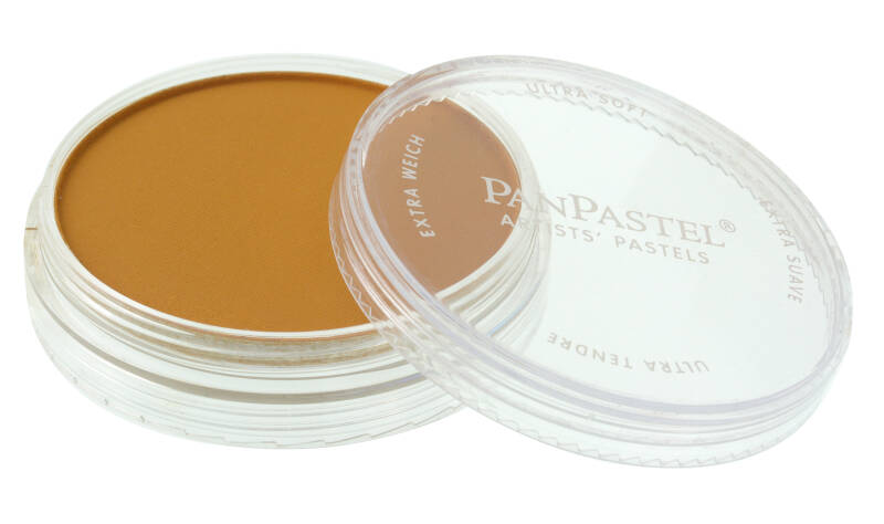 PanPastel Orange Shade  22803