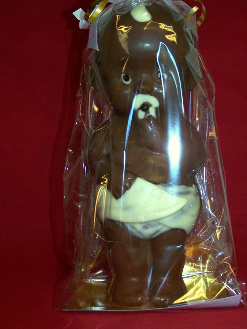 Baby  puur chocolade