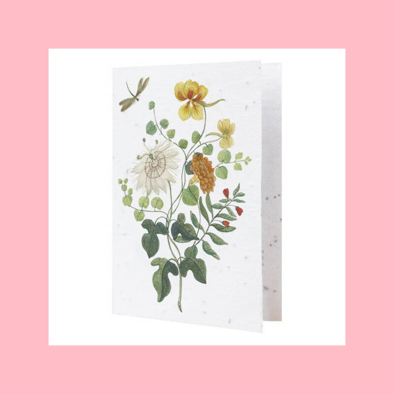 Flowers from the Rijksmuseum archives #3 | Growcard
