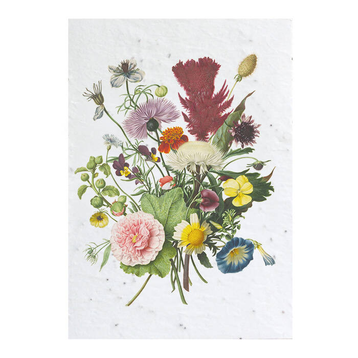 Grow card - Flowers from the Rijksmuseum archives #1