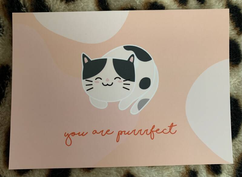 You are purrrfect   Ansichtkaart