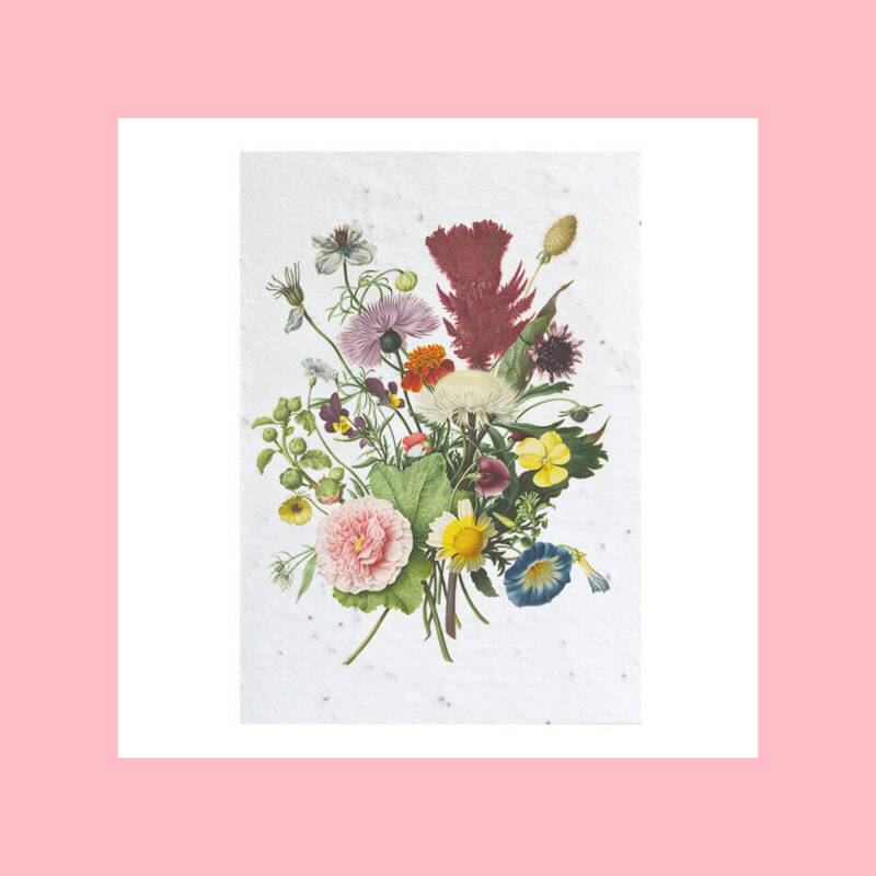 Flowers from the Rijksmuseum archives #1   Growcard