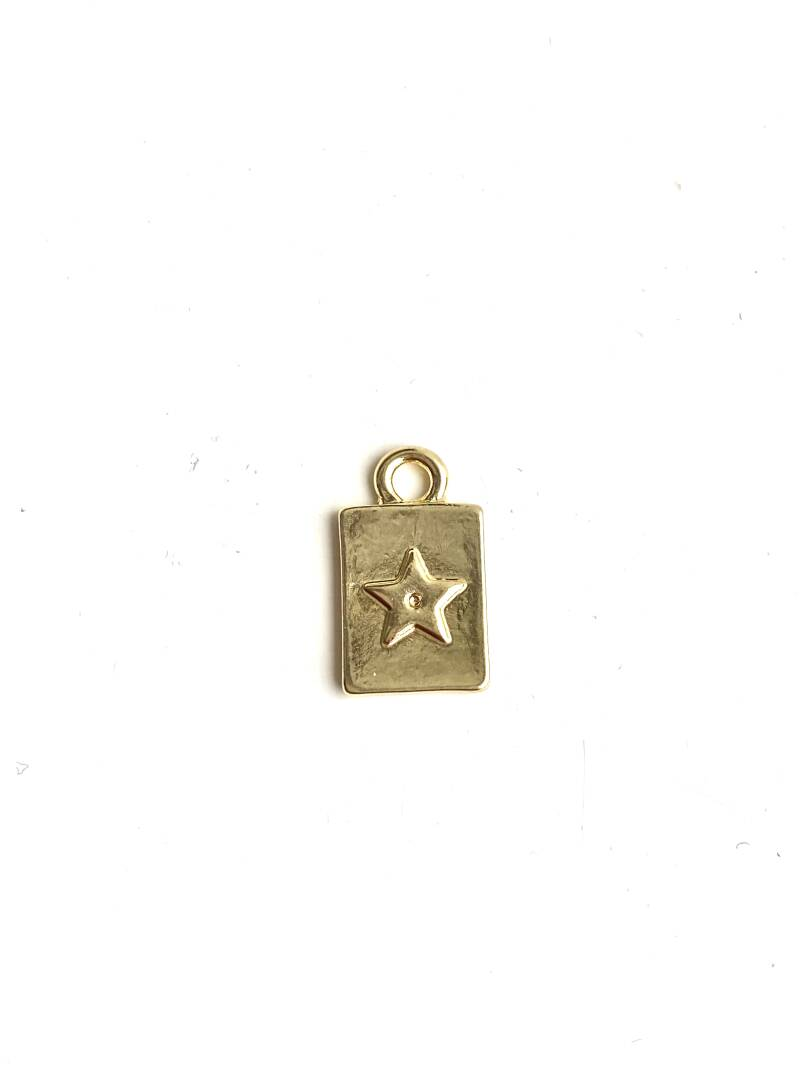 Tag small 8x10mm star gold