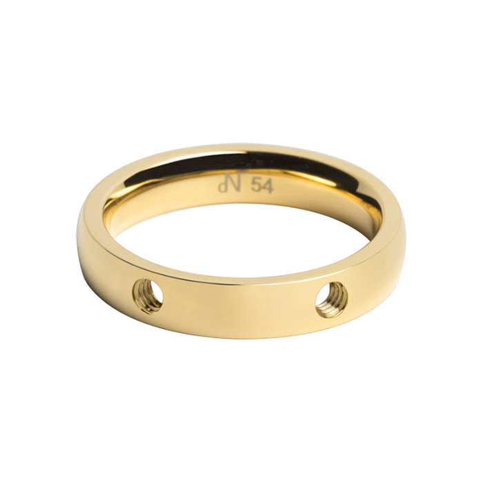 daNicci ring Double 4mm Gold