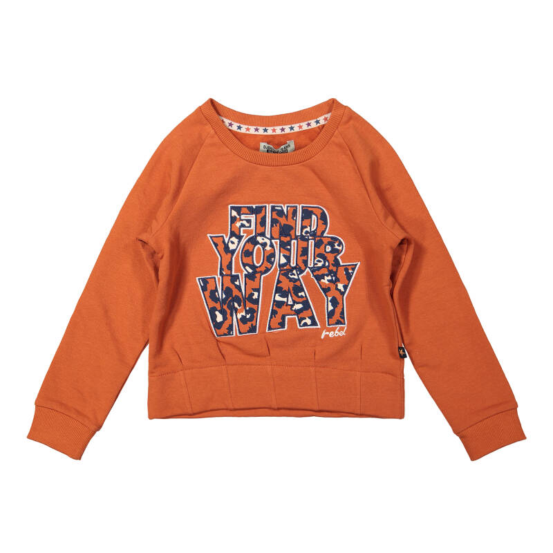 DJ Ducthjeans F40000-45 Sweater AW21