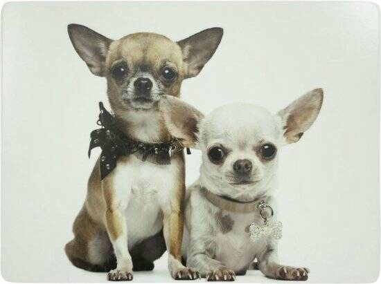 Mars & More Luxe Placemats - Chihuahua's - set van 4