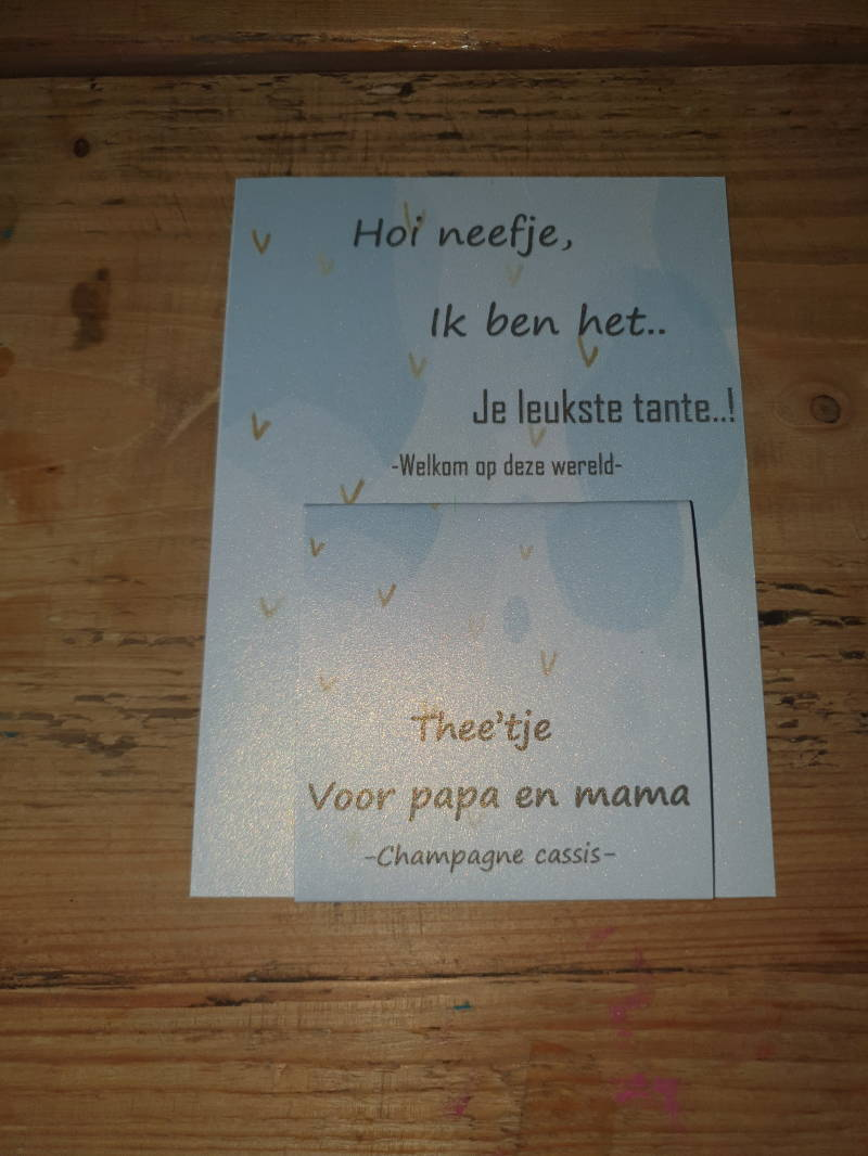 1167 neefje tante