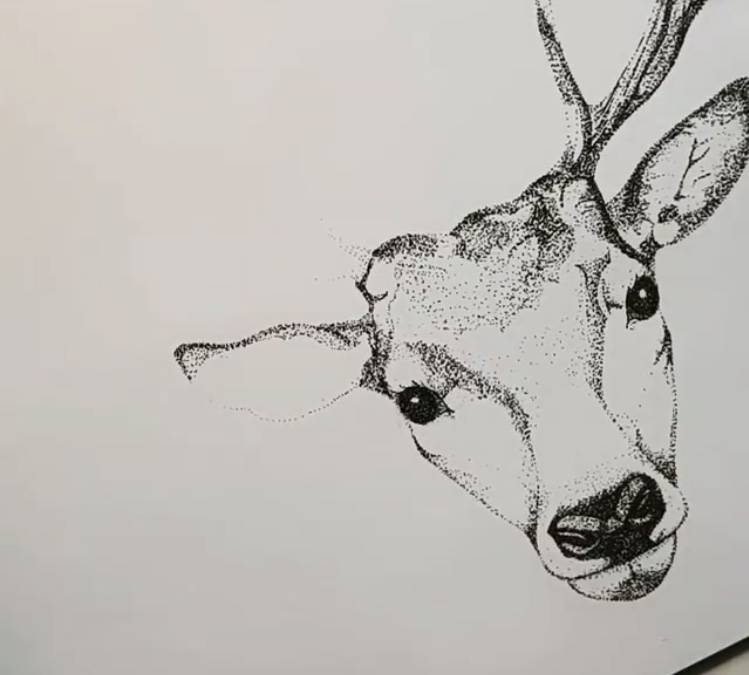 Deer - Pointillism