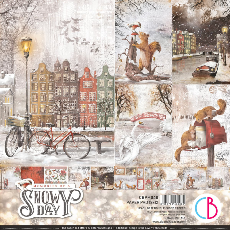 PAPERPACK MEMORIES OF A SNOWY DAY