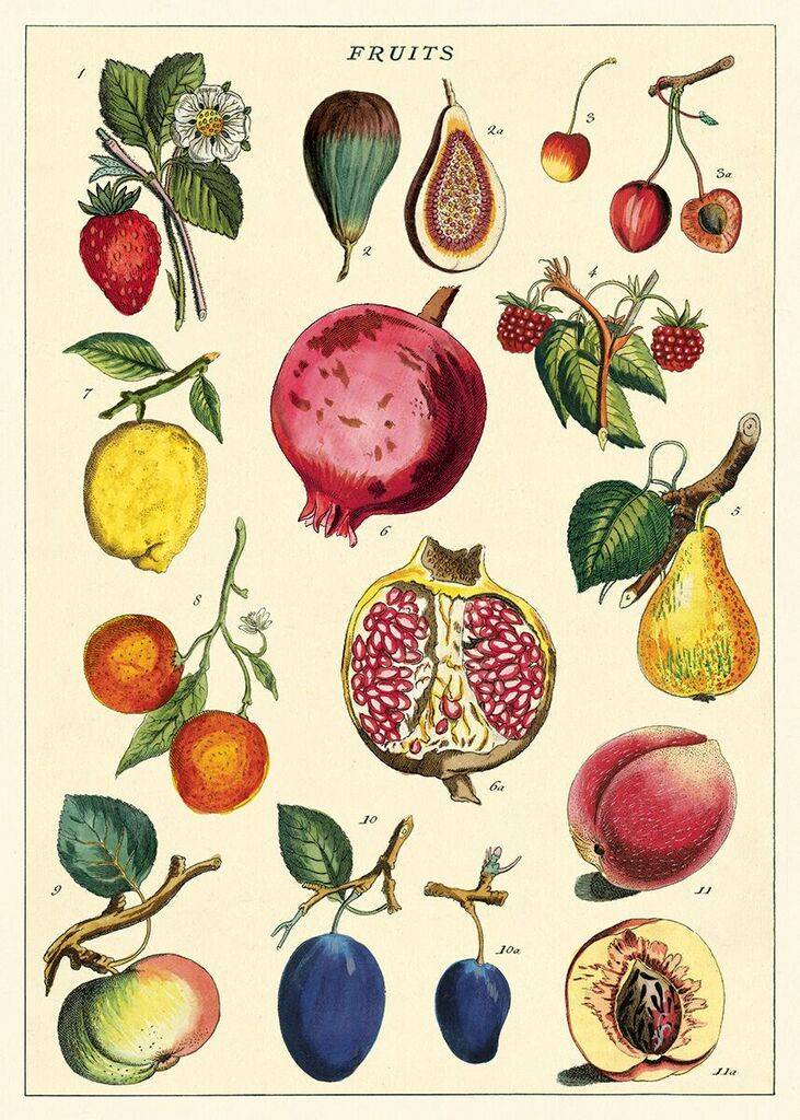 "Cavallani Poster ""Fruits"""