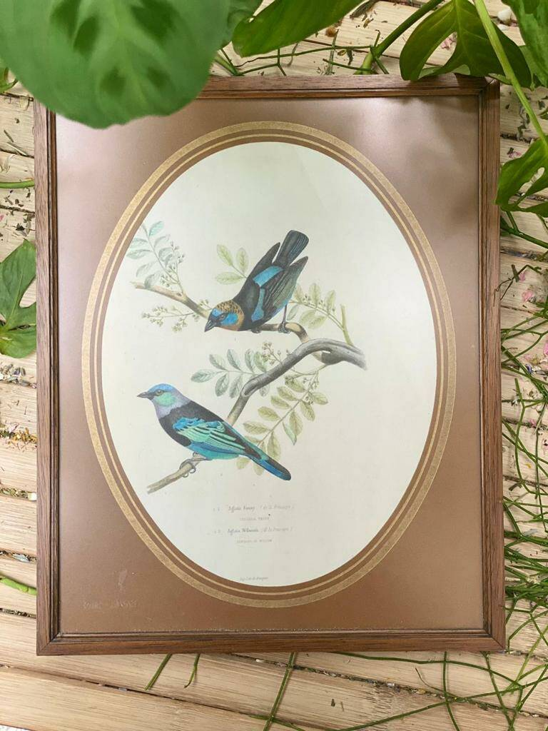 Bird Frame Bluebirds