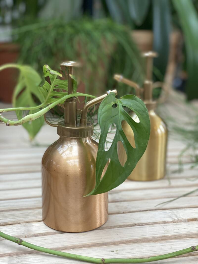 Plant Spray Brass