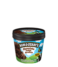 Mini Ben & Jerry's Fudge brownie