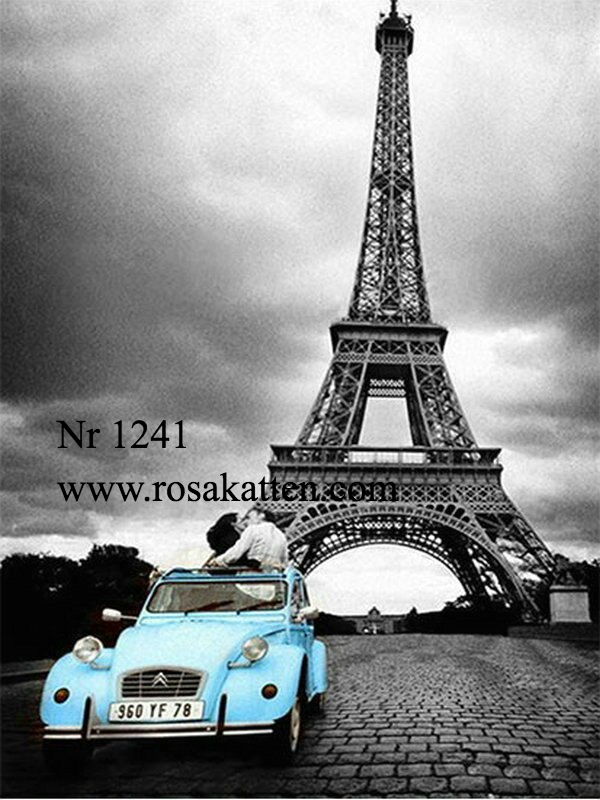 Nr 1241 Paris in love