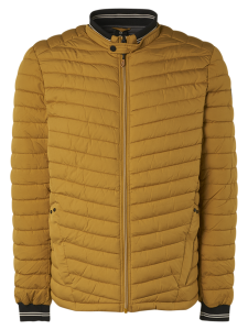 No Excess - Jacket Short Fit Padded Gold