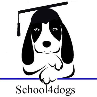 Hondenschool school4dogs
