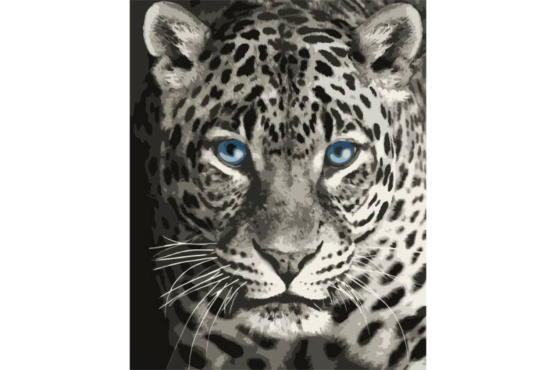 Painting by numbers kit. F012 Blue eyed leopard 40*50 ART53